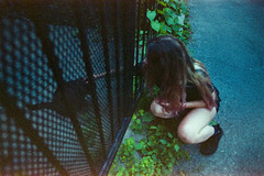 (Just A Stray Cat) Tags: konica minolta centuria 800 expired montreal canada quebec street urban disco stray cat feline felines kitty kittens kitties cats gato 35mm 35 mm film analog analogue stylus epic mju olympus ii mjuii