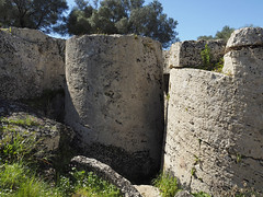 Cava di Cusa, tamburi di colonne ancora unite al banco roccioso (ladigue_99) Tags: cavadicusa calcarenite sicilia sicily italia italy colonne columns campobellodimazara