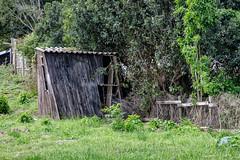 Shabby little hut (Johann (Still Me!)) Tags: hut shabby derelict wall johanndejager ef24105mmf4lisiiusm canoneos5dmarkiv wednesdaywalls hww makemesmile