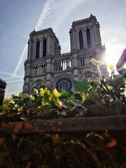 Spring Day, Notre-Dame