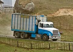 "Got a ""maize bin"" on (SemmyTrailer) Tags: freightliner truck tipper lorry maize bin fl detroit 60series farm stack harvest track rural sector farming"