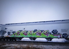 sence (timetomakethepasta) Tags: sence freight train graffiti art grainer hopper equx