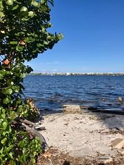 Shorelines (LarryJay99 ) Tags: beach blue florida intercostalwaterway lakeworth water shores shoreline coasts evergreen