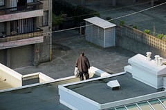 Lurking on the rooftop (HereInVancouver) Tags: man roof apartments outdoors city urban candid streetphotography above vancouverswestend outmywindow canong3x vancouver bc canada