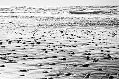 Stones by the sea II (mgschiavon) Tags: blackandwhite bw blackwhite beach sea california abstract texture landscape contrast nature