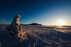 Доброе утро (polosataia3) Tags: таганай урал горы зима снег поход россия елка солнце рассвет высота гора небо природа