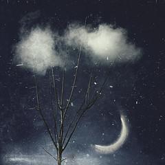 cloud stabber (Dyrk.Wyst) Tags: clouds eclipse grunge iphone6s minimalism night photomanipulation sky surreal tree fantay dreamy wuppertal nordrheinwestfalen deutschland