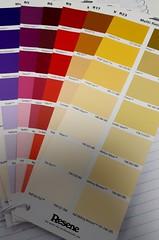Project 365:105 (Jacqi B) Tags: project365 project3652019 decorating paintcharts resene