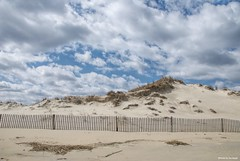 Lost in the clouds.... (Joe Hengel) Tags: lostintheclouds lowerslowerdelaware lsd lewes lewesde delaware de sussexcounty clouds cloudsbluesky cloudyday beach sand dunes dune dunegrass grass grasses fence fenceline spring springtime springday capehenlopenstatepark capehenlopen statepark park
