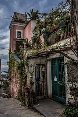 Forio d'Ischia (Nunzio Pascale) Tags: foriodischia casa cancello gate plants ladder bestdiscovery