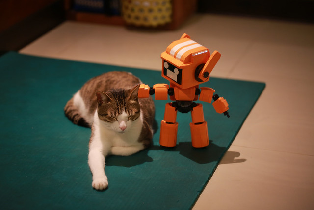 K-VRC + CAT image