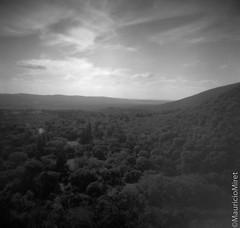 Holga-Acros-01-06.jpg (Mauricio Miret) Tags: epsonv600 holga acros100 ilfosol silverscan bw film blackandwhite