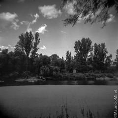 Holga-Acros-02-06.jpg (Mauricio Miret) Tags: holga acros100 ilfosol silverscan epsonv600 bw film blackandwhite