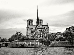 Homage (Rhia.photos) Tags: notredame paris church france french eu europa europe architecture building homage capital city perspective angle light blackandwhite blackwhite bandw bw black white photography photograph photo image capitalcity cathedral river riverseine notredamedeparis gothic seine îledelacité