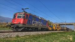 Re 420 314 (Die_Eisenbahn) Tags: sbb sbbcargo sbbc güterzug ferngüterzug re420 re420314 selzach schweiz switzerland zug train freighttrain