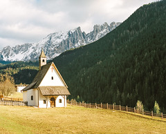 Something gold (André Terras Alexandre) Tags: film analog 120 medium format pentax 67 6x7 kodak portra 400 south tyrol dolomites italy