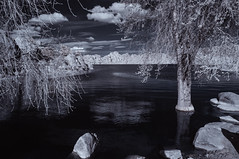View From The Shoreline At Watson Lake (Bill Gracey 23 Million Views) Tags: watsonlake arizona prescott infrared infraredphotography ir convertedinfraredcamera shoreline channelswapping clouds trees boulders composition