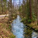 Mühlbach near Oberaudorf, Bavaria, Germany thumbnail