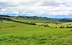 Apanie Road, Oberon NSW