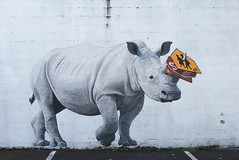 Rhino on Morrison (jonathan.pratt14) Tags: publicart d750 afs2470mmf28 portlandoregon buildingmural public art