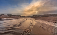 Little rivers in the mist . (Through Bri`s Lens) Tags: misty morning flow croyde sanddunes river stream mist brianspicer canon5dmk3 canon1635f4