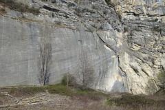 Fault mirror @ Hike to Montagne de la Mandallaz & Lac de la Balme de Sillingy (*_*) Tags: 2019 printemps spring savoie afternoon march annecy 74 hautesavoie france europe sunny hiking mountain montagne nature walk marche jura mandallaz randonnee sillingy faultmirror geology miroirdefaille cliff rock petitebalme