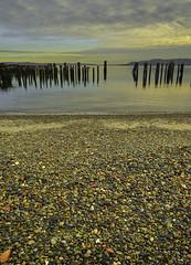 Pebbles and piers, Tacoma (5508) ((8_8)) Tags: tacoma stones beachphotography beach ocean pacific seascape seacoast color colorful sonya7ii sonyvariotessartfe1635mmf4za