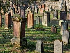 Jüdischer Friedhof Darmstadt (nordelch61) Tags: deutschland darmstadt hessen friedhof jüdisch juden grab gräber grabstätte alt verwittert moos grave graveyard jewish cemetery historisch sandstein grabstein urne skulptur