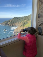 Otter Crest Viewpoint Visitor Center_wildlife viewing