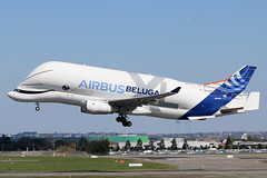 Airbus Beluga XL f-wbxl (totoro - David D.) Tags: airbus beluga xl fwbxl belugaxl avion avions airplanes airplane spotting ciel sky aéronef wing wings aile ailes plane planes moteur engine aircraft aviation aéroport avgeek aviationgeek décollage geek jumbo land landing piste roulage runway taxiway takeoff takingoff voyage vol atterrissage airport canon canoneos canoneos70d 70d 70dcanon 70 70deos eos70deos eos70d toulouse toulouseblagnac aéroporttoulouse aéroportdetoulouseblagnac