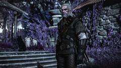 The Witcher 3: Wild Hunt (Graff Metal) Tags: thewitcher3wildhunt game geraltofrivia rivia geralt the black cat dog theblackcatanddog