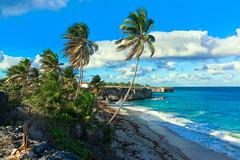 Barbados Bottom Bay (mathias fechner) Tags: applehall saintphilip barbados