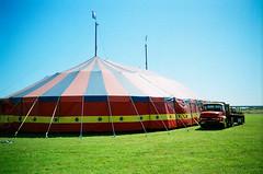 20120217_drewbandy-circus-14830013 (drubuntu) Tags: 800 film aotearoa circus disposable fuji newzealand superia