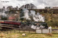 IMG_6954-Edit-3_edited-1 (Bev Cappleman) Tags: nymr goathland northyorkshiremoors train steam railway heritagerailway northyorkshiremoorsrailway