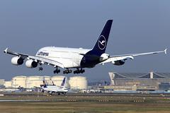 Lufthansa  Airbus A380-841 D-AIMC (widebodies) Tags: frankfurt main fra eddf widebody widebodies plane aircraft flughafen airport flugzeug flugzeugbilder lufthansa airbus a380841 daimc