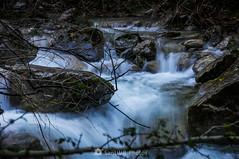 Revoltosa (SantiMB.Photos) Tags: 2blog 2tumblr 2ig río river gurn garrotxa girona otoño autumn santprivatdenbas valldenbas geo:lat=4214451958 geo:lon=238676858 geotagged cataluna españa
