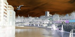 Negative View Bristol Life (Kevin Pendragon) Tags: bristol bridge seagull buildings water people outdoors outside nature naturephotography sun sunshine clouds day night church grass blue white black orange fun shadows life colours sky tree trees green art yellow