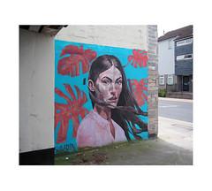 eyes to the camera (chrisinplymouth) Tags: art wallart portrait wall plymouth devon england uk cw69x corner city diagx desx face diagonal plymgrp