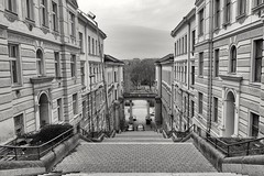 Down to the park (phileveratt) Tags: lužánkypark brno czechrepublic czechia fencefriday fencedfriday happyfencefriday hff canon eos77d efs18135 blackwhite monochrome
