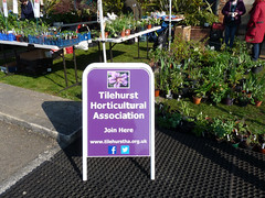 Tilehurst Horticultural Association at Bean Pole Day, April 2019 (3) (karenblakeman) Tags: caversham uk april 2019 beanpoleday cavershamcourtgardens tilehursthorticulturalassociation tha sign plants seedlings reading berkshire