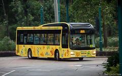 Disney Shuttle Bus MAN NL323F With Gemilang Coachwork MAN Lion's City Hybrid Bodywork (chungleung1) Tags: man manlionscityhybrid manlionscity nl323f gemilang a22 euro5 12m disneyland shuttle hk hkbus hongkong hkg lantauisland kcb ux4741 hotelroute
