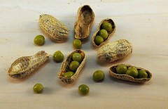 Pea Nuts (dbourdon47) Tags: 100xthe2019edition 100x2019 image47100