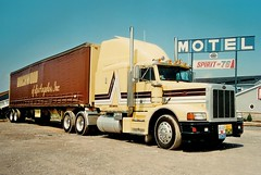 Peterbilt 377: Birchwood of LA, Inc (PAcarhauler) Tags: pete peterbilt semi truck tractor trailer