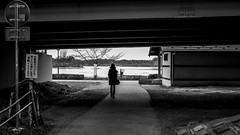 Under the bridge (Igor Voller) Tags: japan mito ibaraki spring woman sihlouette bridge way path road pond person hat hut park shadow light