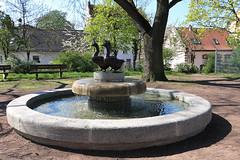 Gänsebrunnen (julia_HalleFotoFan) Tags: gänsebrunnen hallesaale hallekröllwitz brunnen gustavweidanz neuguss bronze fountain