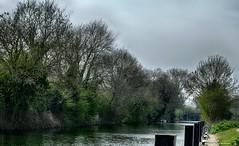 Culham river view (akatsoulis) Tags: thamesnavigation suttoncourtenay nikon nikond5300 riverthames oxfordshire culhamlock