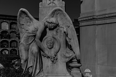 Cementiri de Poblenou (michael_hamburg69) Tags: cementeriodepoblenou barcelona cemetery friedhof sculpture skulptur elpoblenou cementiridelpoblenou cementery poblenoucemetery cementeriodepueblonuevo cementiridepoblenou eastcemetery cementiridelest angel engel ange female monochrome flowers blumen relief woman
