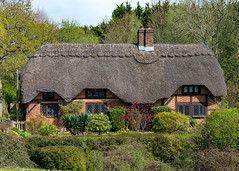 Thatched Cottage, Brook, New Forest, Hampshire, UK (rmk2112rmk) Tags: thatched cottage thatchedcottage brook newforest hampshire uk village building rural architecture