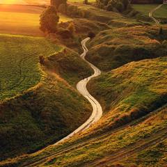 Road (fotoswietokrzyskie) Tags: sony a850 landscape grass tree farmlands road carl zeiss 2470mm ravine gorge evening light