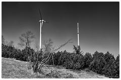 Exposée à tous vents (r0llsky) Tags: eole éolienne nb bw hornisgrinde schwarzwald forêtnoire